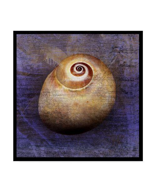 "Trademark Global John W. Golden 'Shark Eye Purple' Canvas Art - 24"" x 24"""