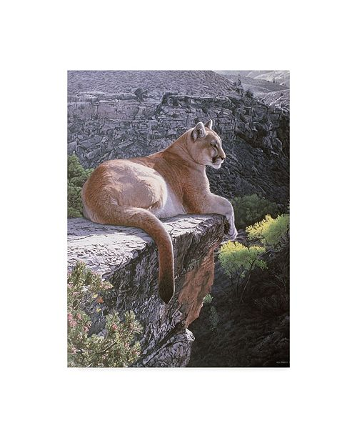 """Trademark Global Ron Parker 'Cougar Country' Canvas Art - 35"""" x 47"""""""