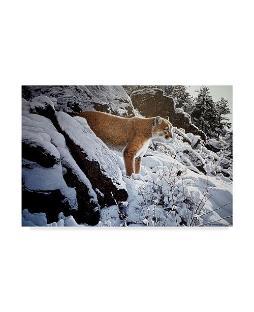 "Trademark Global Ron Parker 'Winter Lookout Cougar' Canvas Art - 22"" x 32"""