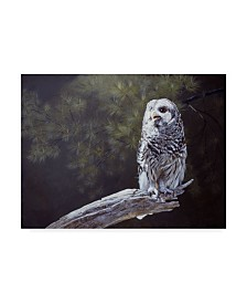 "Rusty Frentner 'Feathered Alarm Clock' Canvas Art - 35"" x 47"""