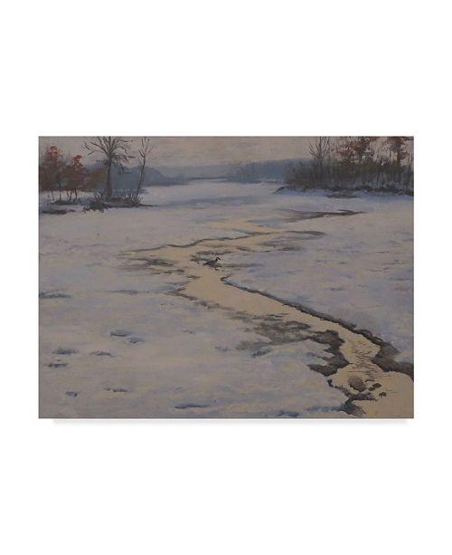 "Trademark Global Rusty Frentner 'Trickle' Canvas Art - 35"" x 47"""