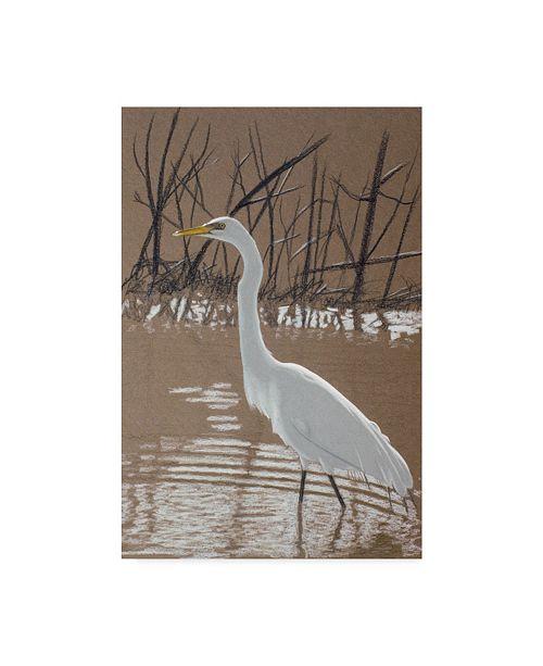 "Trademark Global Rusty Frentner 'Great Egret' Canvas Art - 30"" x 47"""