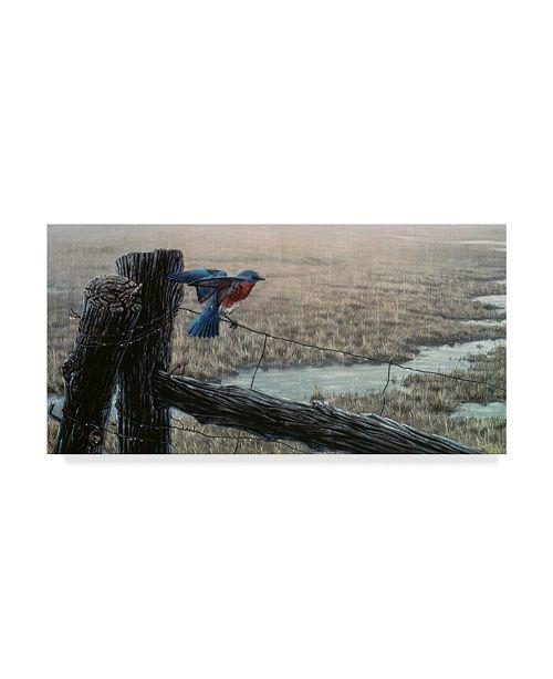 "Trademark Global Wilhelm Goebel 'Eastern Bluebird' Canvas Art - 24"" x 47"""