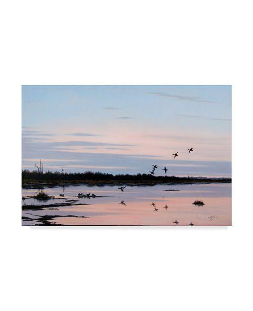 "Trademark Global Wilhelm Goebel 'Sunset March Black Ducks' Canvas Art - 22"" x 32"""