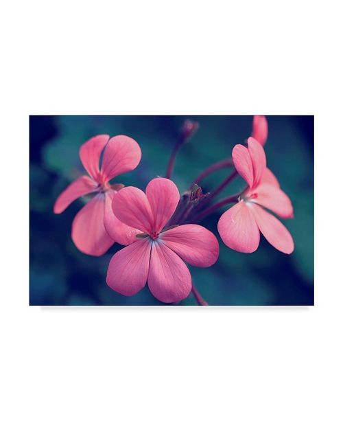 "Trademark Global Incredi 'Say It With Flowers' Canvas Art - 32"" x 22"""