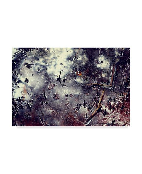"Trademark Global Incredi 'Abstract Puddle' Canvas Art - 47"" x 30"""