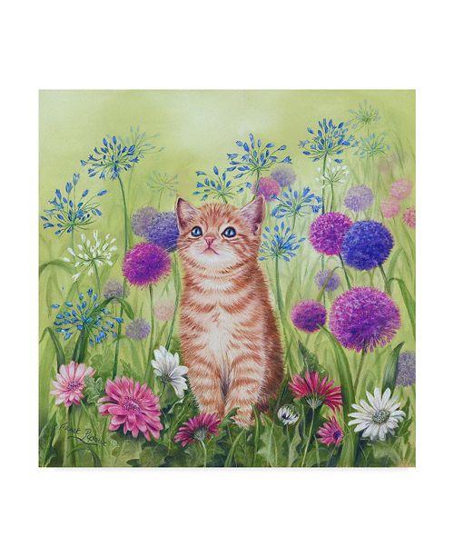 "Trademark Global Janet Pidoux 'Ginger Kitten In Flowers' Canvas Art - 35"" x 35"""