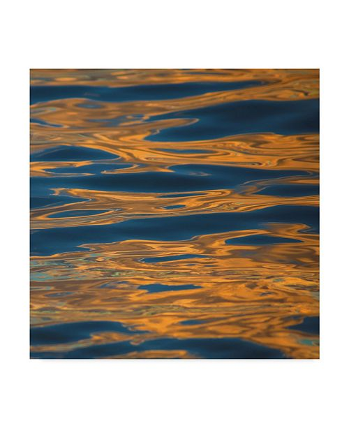 "Trademark Global Jason Matias 'Orange Waves' Canvas Art - 35"" x 35"""