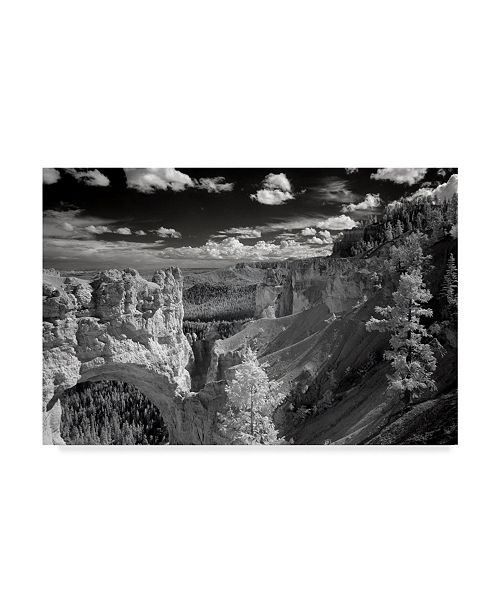 "Trademark Global J.D. Mcfarlan 'Bryce' Canvas Art - 47"" x 30"""