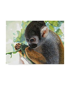 """Luis Aguirre 'The Small Amazon' Canvas Art - 32"""" x 24"""""""