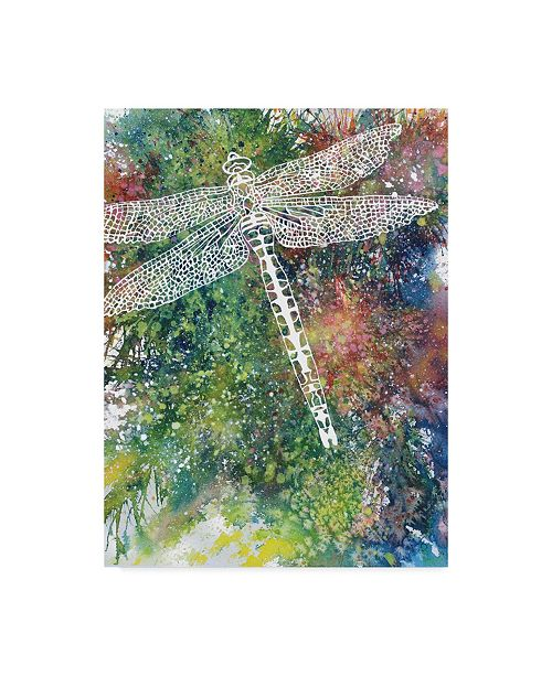 """Trademark Global Michelle Faber 'Dragonfly 1' Canvas Art - 35"""" x 47"""""""