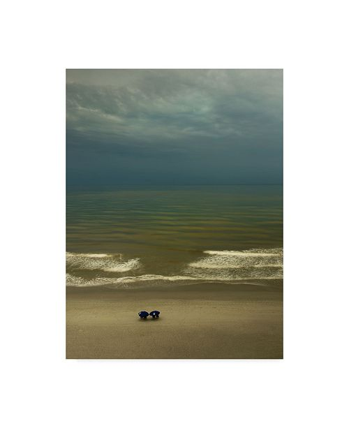 """Trademark Global Natalie Mikaels 'After The Storm Clouds' Canvas Art - 24"""" x 32"""""""