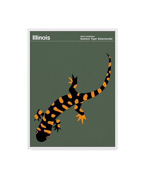 "Trademark Global Print Collection - Artist 'Illinois Salamander' Canvas Art - 35"" x 47"""