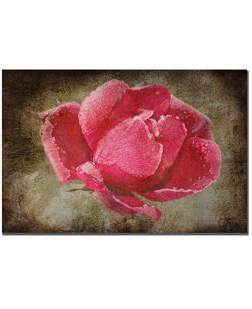 """Trademark Global Lois Bryan 'Frosted Rose' Canvas Art - 47"""" x 30"""""""