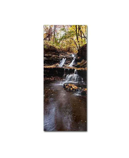 "Trademark Global Kurt Shaffer 'Autumn Falls' Canvas Art - 47"" x 20"""