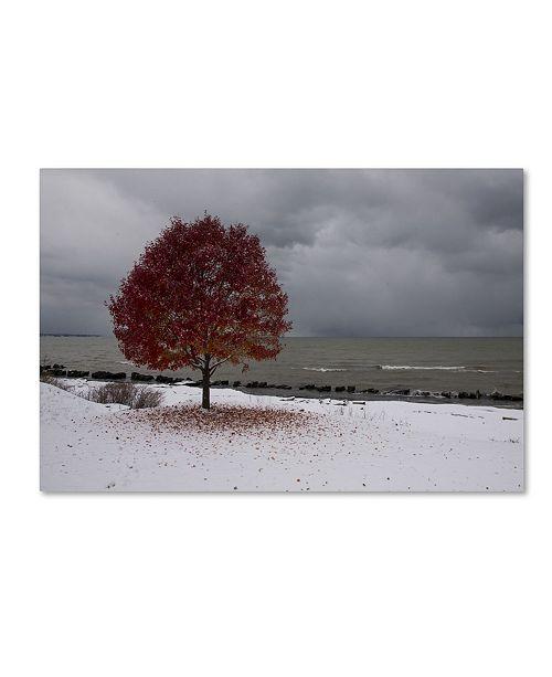 "Trademark Global Kurt Shaffer 'Autumn Contrast on the Lake' Canvas Art - 30"" x 47"""