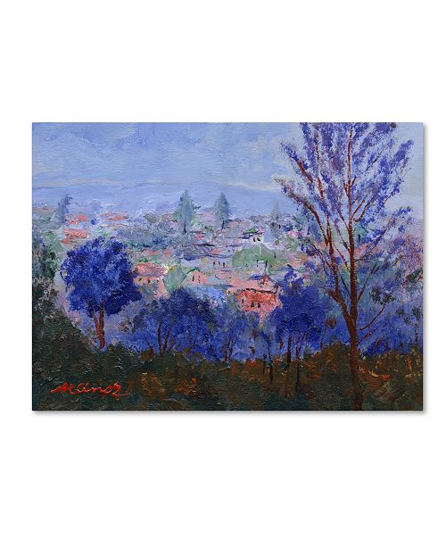"Trademark Global Manor Shadian 'Mystic Town' Canvas Art - 35"" x 47"""