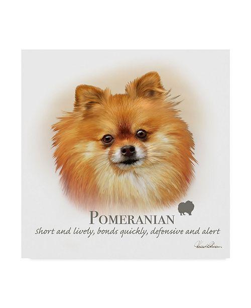 "Trademark Global Howard Robinson 'Pomeranian' Canvas Art - 14"" x 14"""