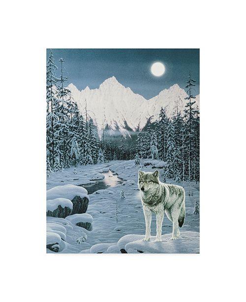 "Trademark Global Jeff Tift 'Winter Twilight' Canvas Art - 14"" x 19"""