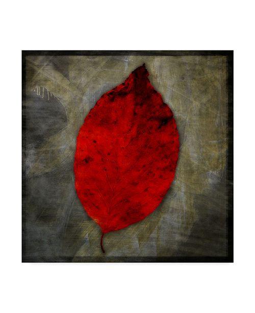 """Trademark Global John W. Golden 'Red Dogwood' Canvas Art - 14"""" x 14"""""""