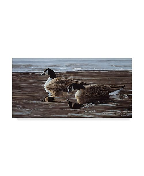 """Trademark Global Ron Parker 'A Break In The Ice Canada Geese' Canvas Art - 12"""" x 24"""""""