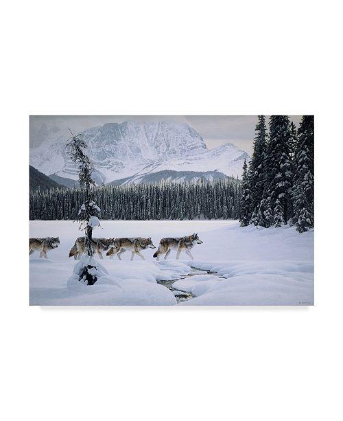 "Trademark Global Ron Parker 'Emerald Lake' Canvas Art - 12"" x 19"""