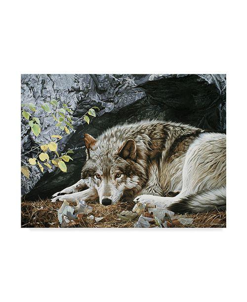 """Trademark Global Ron Parker 'Resting Spot Wolf' Canvas Art - 14"""" x 19"""""""
