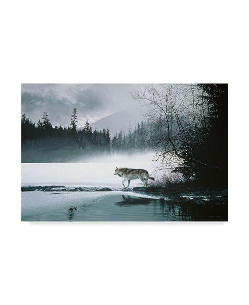 "Trademark Global Ron Parker 'Spring Mist Gray Wolf' Canvas Art - 12"" x 19"""