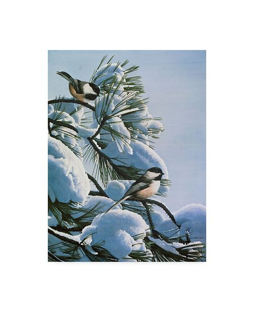 "Trademark Global Ron Parker 'Snow On The Pine Chickadees' Canvas Art - 14"" x 19"""