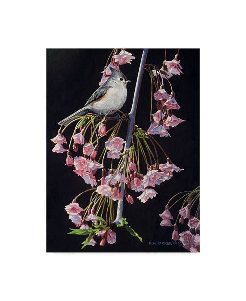 "Trademark Global Ron Parker 'Titmouse And Blossoms' Canvas Art - 14"" x 19"""
