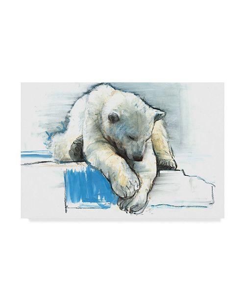 "Trademark Global Mark Adlington 'Over the Edge' Canvas Art - 12"" x 19"""