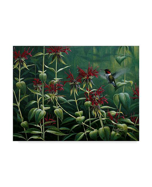 "Trademark Global Wilhelm Goebel 'Hummingbird And Monarda' Canvas Art - 14"" x 19"""