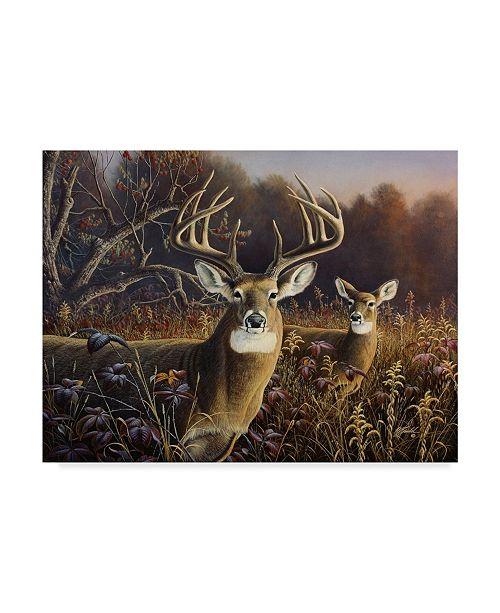 """Trademark Global Wilhelm Goebel 'Deer' Canvas Art - 14"""" x 19"""""""