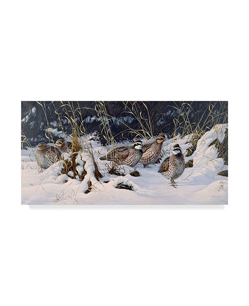 "Trademark Global Wilhelm Goebel 'Close To Cover Bobwhites' Canvas Art - 12"" x 24"""
