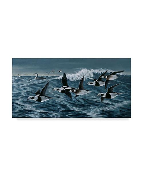 "Trademark Global Wilhelm Goebel 'Rough Day On The Bay' Canvas Art - 10"" x 19"""