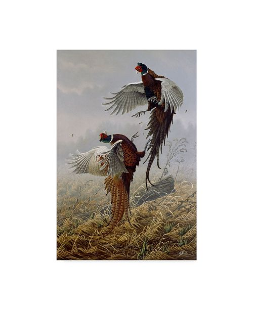 "Trademark Global Wilhelm Goebel 'Ring Neck Rivalry' Canvas Art - 12"" x 19"""