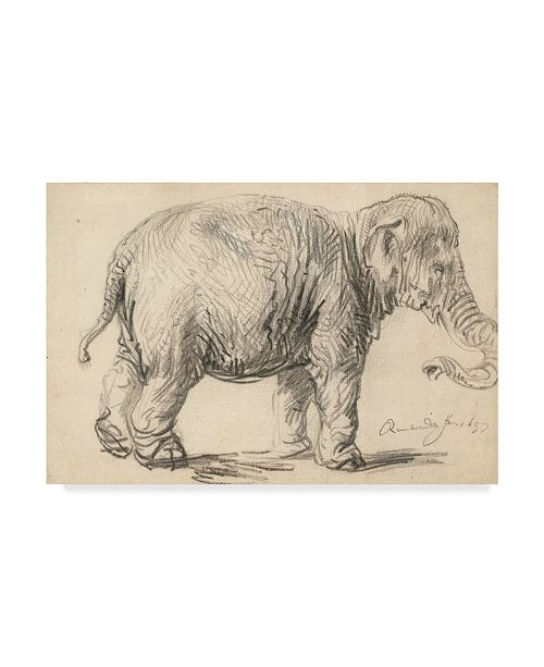 "Trademark Global Rembrandt 'An Elephant, 1637' Canvas Art - 12"" x 19"""