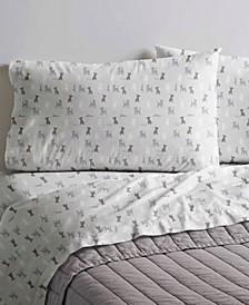 Printed Cotton Percale King Sheet Set