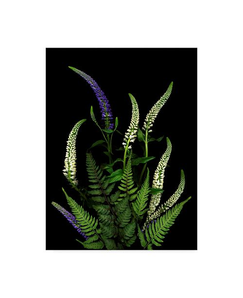 """Trademark Global Susan S. Barmon 'Blue And White Spires And Ferns' Canvas Art - 24"""" x 32"""""""
