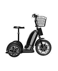 Mototec 48V 800W Electric Trike