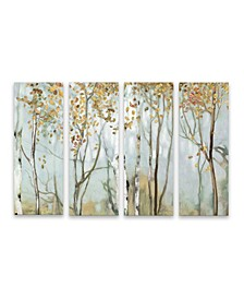 Birch In The Fog Ii Canvas Collection