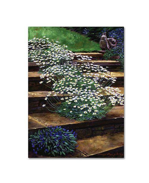 "Trademark Global David Lloyd Glover 'Dainty Daisies' Canvas Art - 24"" x 32"""