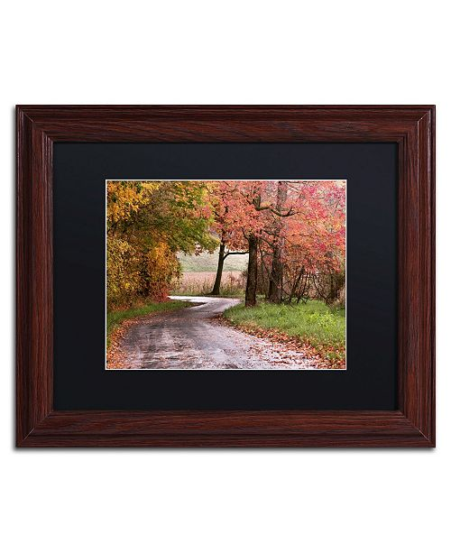 "Trademark Global Jason Shaffer 'Forgotten Vermilion' Matted Framed Art - 14"" x 11"""