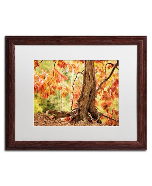 "Trademark Global Jason Shaffer 'Hang Tight' Matted Framed Art - 20"" x 16"""