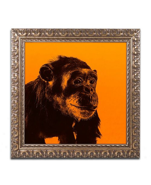 "Trademark Global Claire Doherty 'Chimp No 3' Ornate Framed Art - 16"" x 16"""