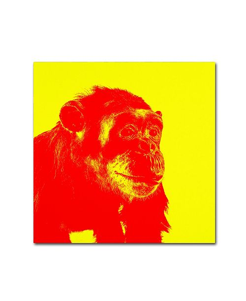 "Trademark Global Claire Doherty 'Chimp No 4' Canvas Art - 35"" x 35"""