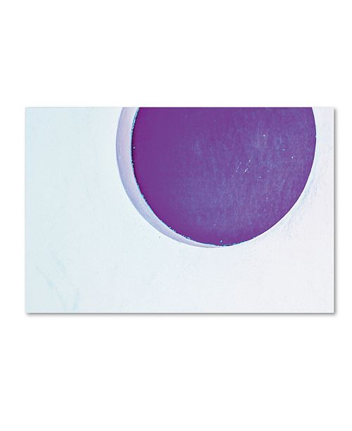 """Trademark Global Claire Doherty 'Porthole in Plum' Canvas Art - 19"""" x 12"""""""
