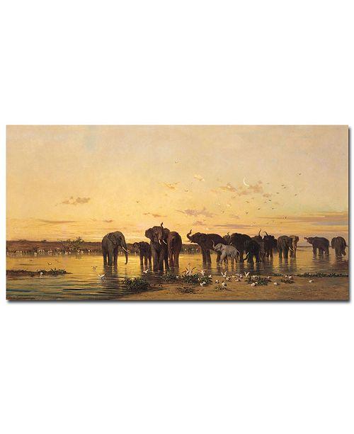 "Trademark Global Charles Emile de Tournemine 'African Elephants' Canvas Art - 47"" x 24"""