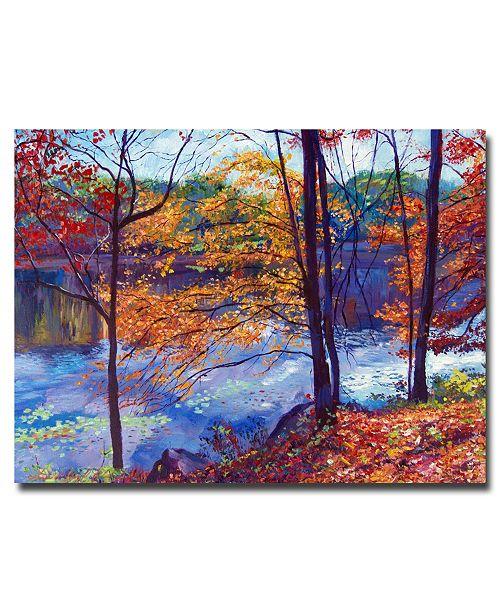 "Trademark Global David Lloyd Glover 'Falling Leaves' Canvas Art - 47"" x 35"""