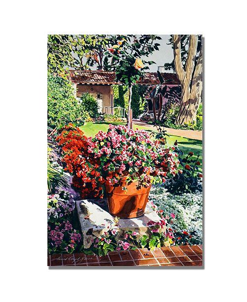 "Trademark Global David Lloyd Glover 'Santa Barbra Garden' Canvas Art - 32"" x 26"""